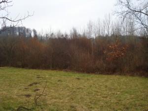 18-03-10_Brüelmatten-Einsatz_02